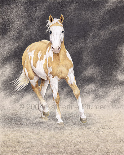 Colored Pencil Drawing Paint Horse